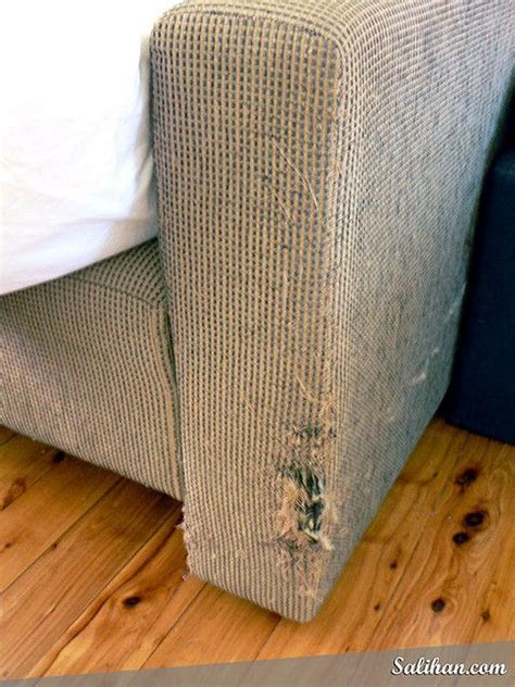 How To Repair Scratched Leather Sofa Cats Leather And Tack On