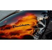 Harley Davidson XL 1200 Sportster Forty Eight Custom Paint Real Flames