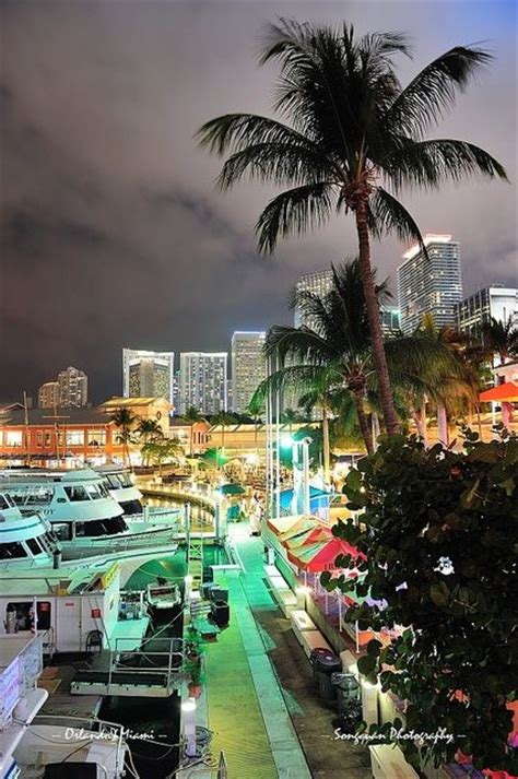 bayside marketplace miami florida 28 best images about miami florida on pinterest south