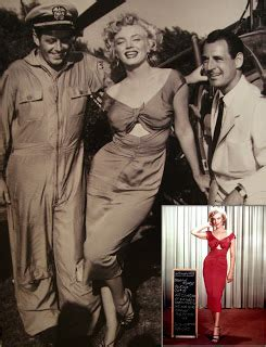 Dress Sabrina Doroty Magenta kittens aprons the personal style of marilyn