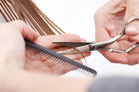 cutting hair hairdressers cutting hair newest wodip com