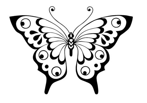 stencil butterfly blackline butterfly pinterest