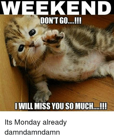 it s monday meme weekend will miss you so much i its monday already