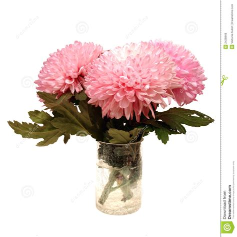 Pink Flowers In A Vase by Pink Flowers In Vase Royalty Free Stock Photos Image