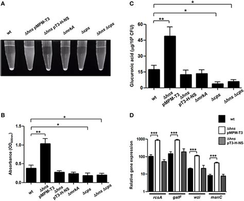 protein h ns frontiers h ns nucleoid protein controls virulence