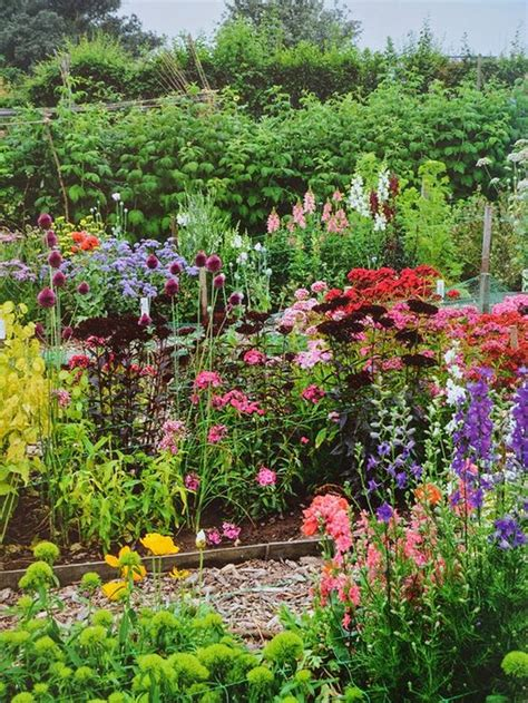 cut flower garden design the cut flower patch a guide to growing your own