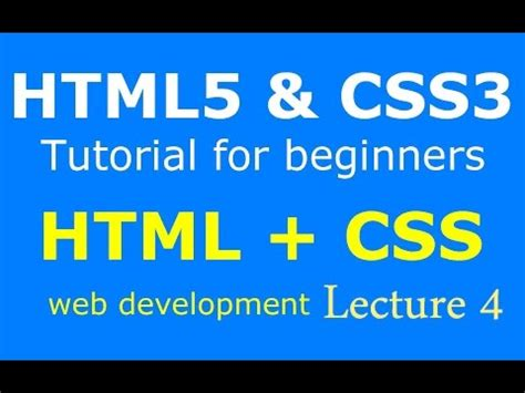 css tutorial urdu lecture 4 how to create button and contact form with