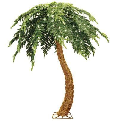 prelit palm tree panorama tree care