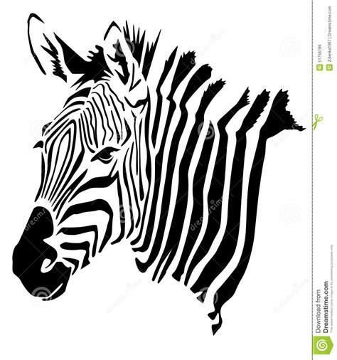 black and white zebra ls zebra head hippotigris stock illustration image 51756786