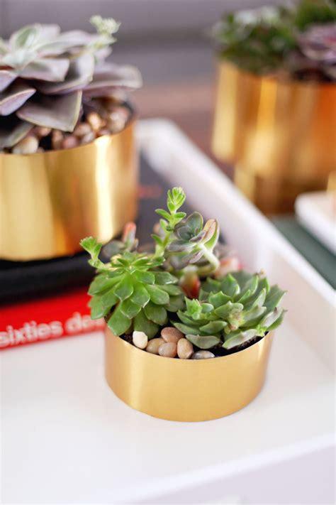 succulent planter diy 25 creative diy planter projects