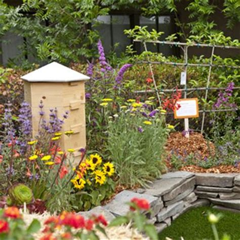 how to have a beehive in your backyard 12 best images about bee friendly gardens on pinterest