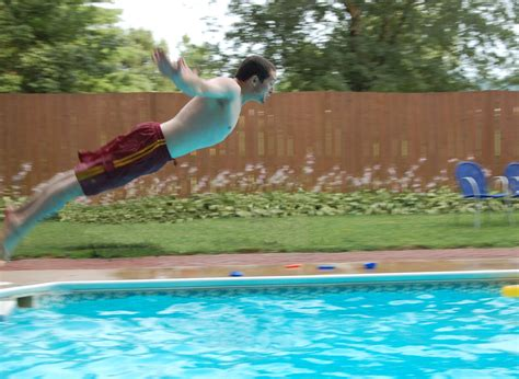 swan dive free swan dive stock photo freeimages