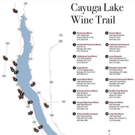 cayuga lake wine trail map home rochester limo wine tours and winery tours