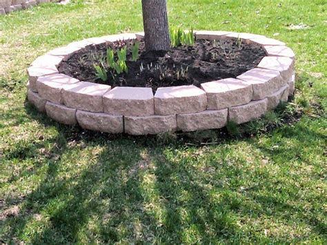 landscaping bricks around tree
