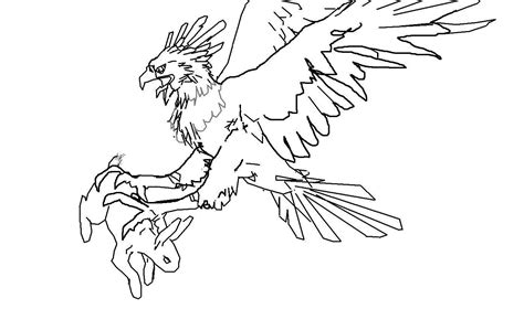 harpy eagle drawing for kids www imgkid com the image