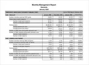 Management Reports Template monthly report management templates word excel format