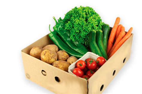 vegetables delivered the 5 best organic vegetable delivery services in