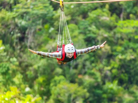 zip line skagway excursions during your alaska cruise