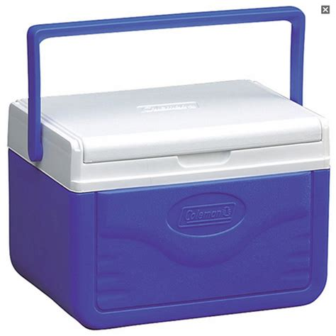 cooler box 5 5 liter 6s outdoor world sporting goods 5 qt cooler chest