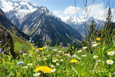 bilder marmorbã den bodenschutz in den alpen auf dem pr 252 fstand umweltbundesamt