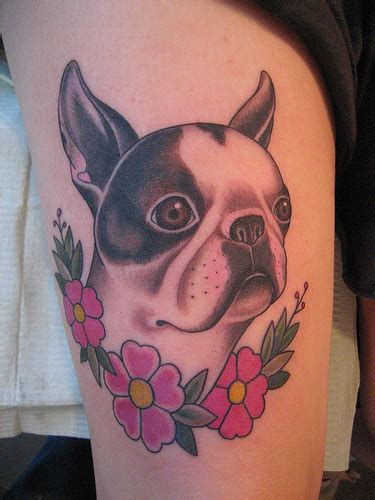 Wheezy Finished Boston Terrier Tattoo A Tattoo Of Our Boston Terrier Tattoos Designs