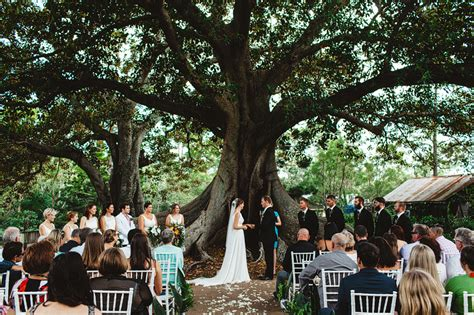 Outdoor Decorations old petrie town wedding 187 tim harris photography