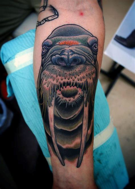 walrus tattoo 40 walrus designs for marine mammal ink ideas