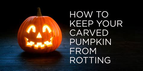how to preserve pumpkins for 5 tips for keeping a carved pumpkin from rotting hgtv s
