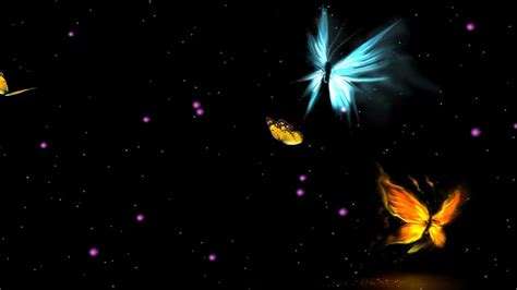 butterfly wallpaper for desktop with animation fantastic butterfly animated wallpaper http www