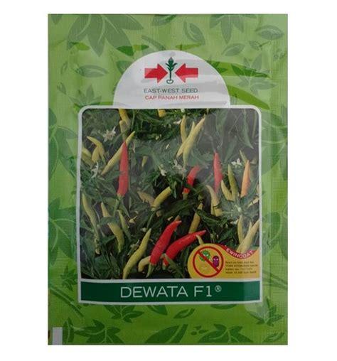 Benih Cabe Rawit Dewata 2250 Butir benih panah merah cabe rawit dewata f1 2 250 biji jual