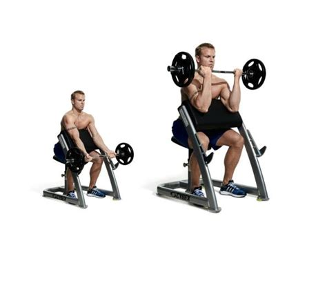 ez bar preacher curl the 30 best arms exercises of all