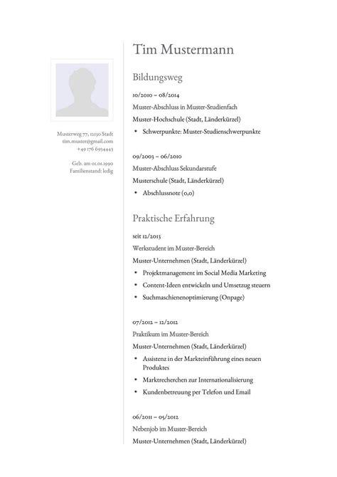 Lebenslauf Vorlagen Marketing lebenslauf muster f 252 r analyst lebenslauf designs