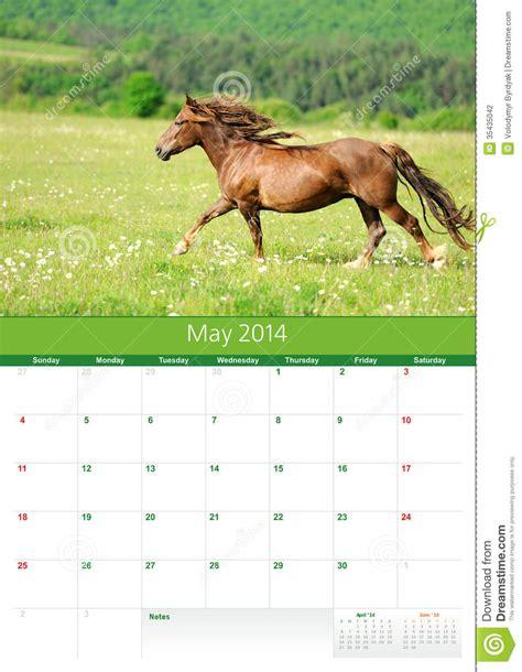 calendar 2014 horse may stock photo image of week