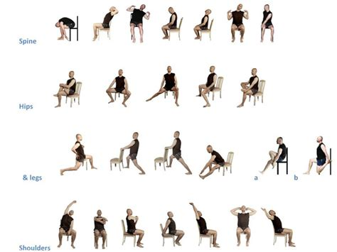 printable chair yoga poses for seniors chair stretching exercises yesnofitness yesnofitness com
