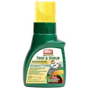 Borers In Fruit Trees - ortho tree and shrub 16 oz concentrate insect killer 0345410 the home depot