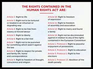 Rights Essay by Human Rights Essay