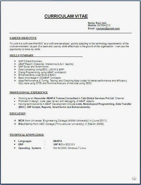 Abap Fresher Resume Format by Sap Abap Developer Resume Format Yourmomhatesthis