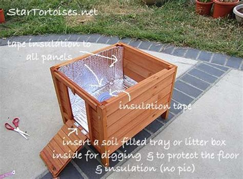 Outdoor Heat Ls For Tortoise by 96 Best Images About Tortoises On Tortoise