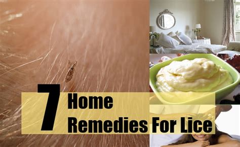 home remedies for lice and nits removal