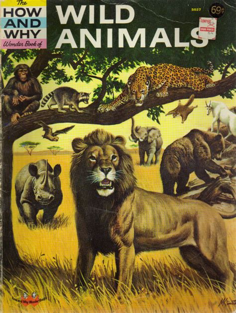 Dk The Animal Book Ebook animal books images