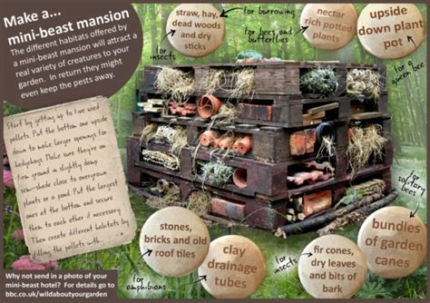 simple bug hotel  kids red ted arts blog