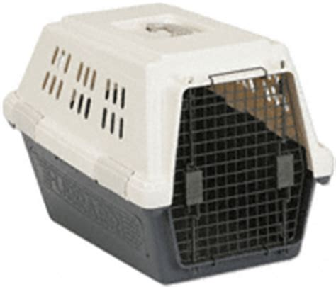 medium sized kennel medium crates free shipping and low prices