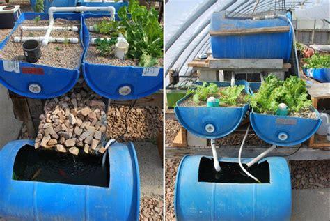 Build a vertical aquaponic veggie & fish farm for small