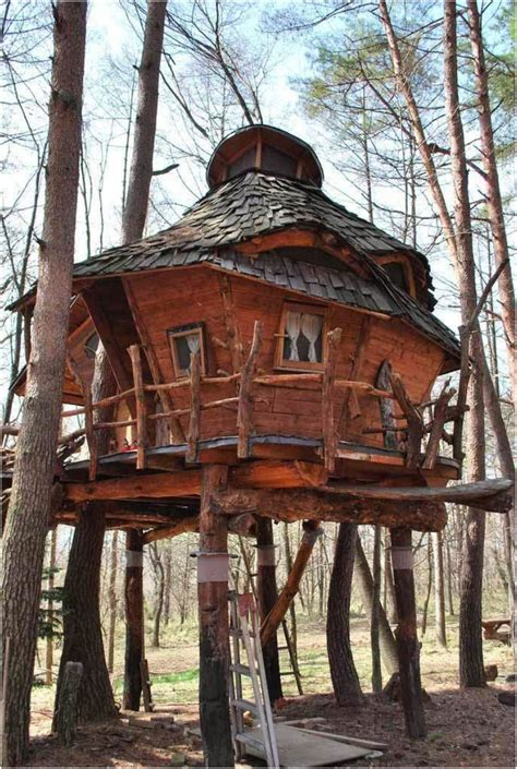 treehouse homes 10 fantastic treehouse homes that will blow your mind