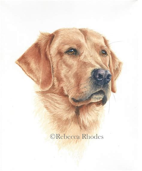 how to paint a realistic retriever in watercolor