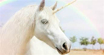 are unicorns real here are the facts george lizos