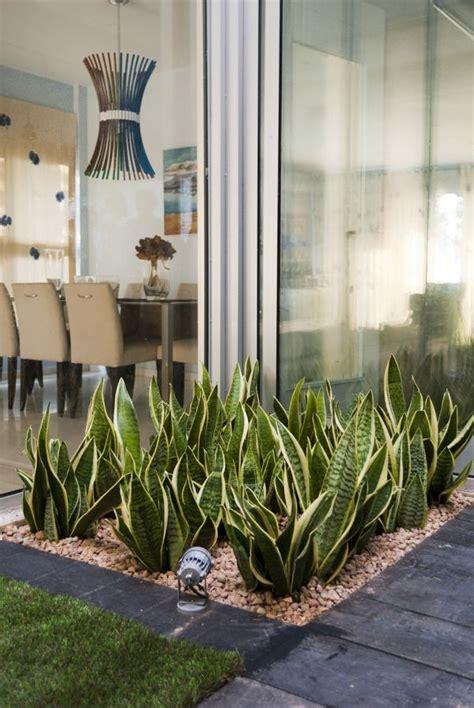 imagenes de jardines interiores modernos las 25 mejores ideas sobre jardineras interiores en