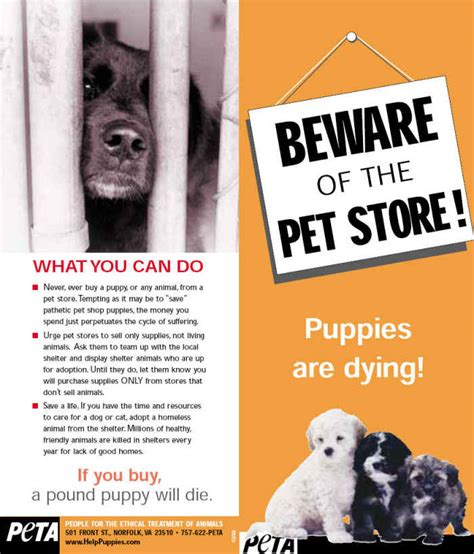 puppy mills articles beware of the pet store stop puppy mills caigns animal rights activism from
