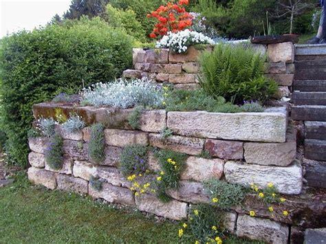 natursteinmauer garten 29 besten natursteinmauern bilder auf