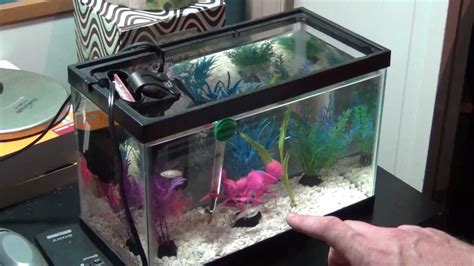 fish tank headboard for sale fish tanks for sale trend fish tank headboard for sale 90